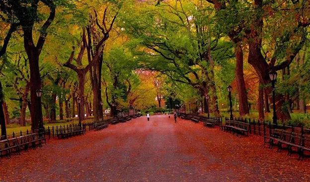 纽约赏秋指南 | 秋日童话就在这12处景点